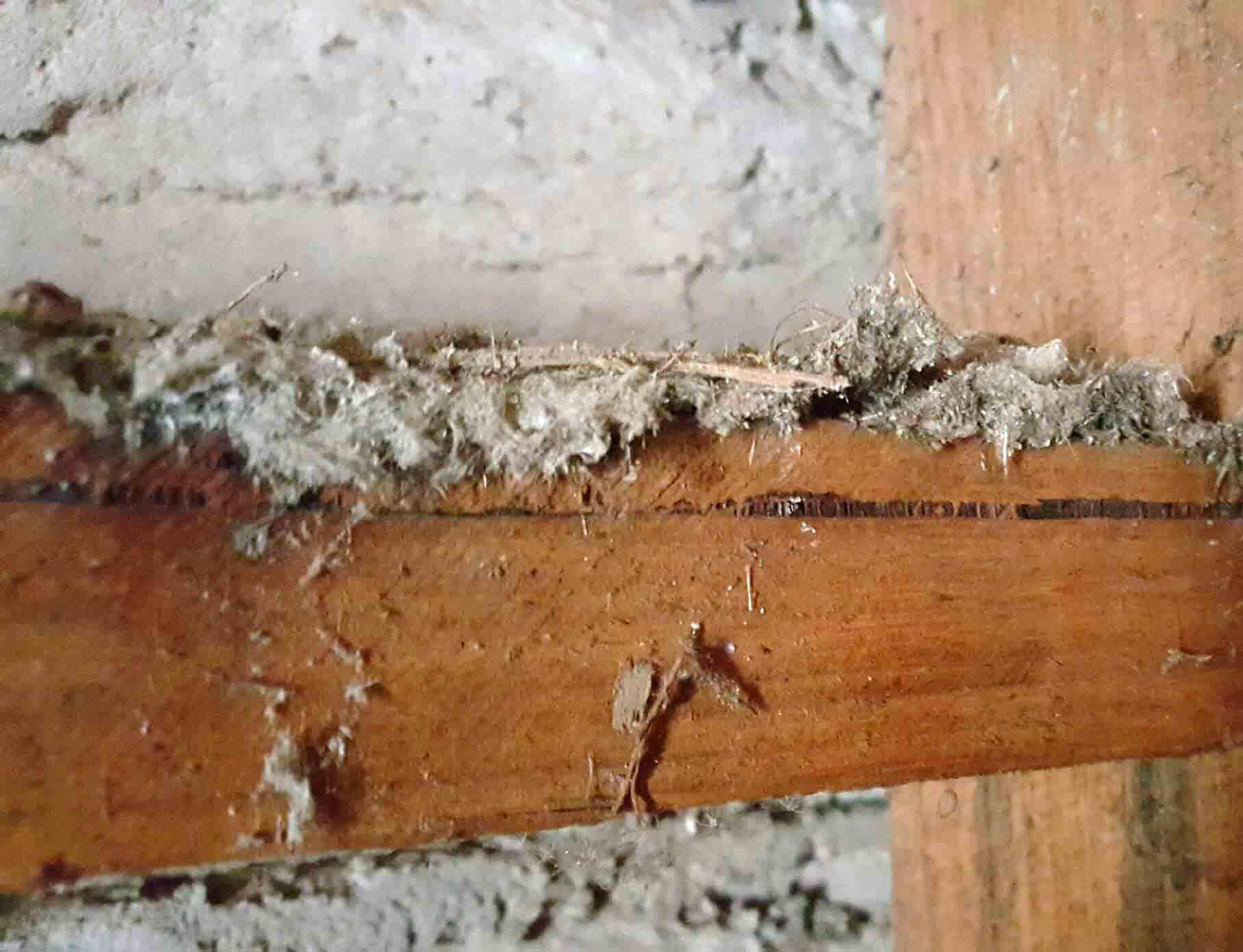 Reasons why asbestos is dangerous